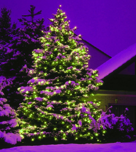 Frohe Weihnachten !